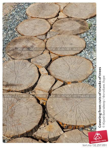 Купить «Covering from cuts of trunks of trees», фото № 32257051, снято 14 июня 2014 г. (c) Юрий Бизгаймер / Фотобанк Лори