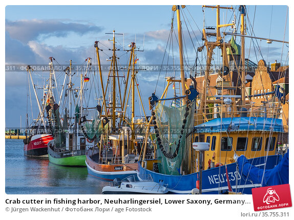 Crab cutter in fishing harbor, Neuharlingersiel, Lower Saxony, Germany... Стоковое фото, фотограф Jürgen Wackenhut / age Fotostock / Фотобанк Лори