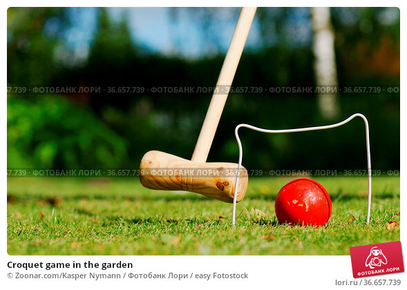 Croquet game in the garden. Стоковое фото, фотограф Zoonar.com/Kasper Nymann / easy Fotostock / Фотобанк Лори