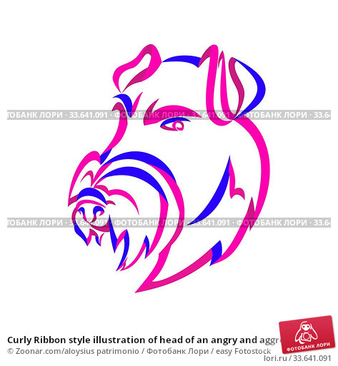 Купить «Curly Ribbon style illustration of head of an angry and aggressive Manchester Terrier, a breed of dog of the smooth-haired terrier type done in twisted free flowing line art on isolated background.», фото № 33641091, снято 12 июля 2020 г. (c) easy Fotostock / Фотобанк Лори
