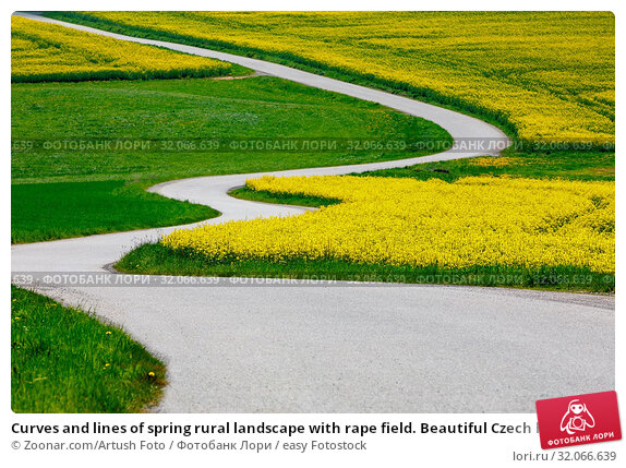 Curves and lines of spring rural landscape with rape field. Beautiful Czech highland countryside. Стоковое фото, фотограф Zoonar.com/Artush Foto / easy Fotostock / Фотобанк Лори