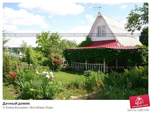 Купить «Дачный домик», фото № 233119, снято 20 июня 2007 г. (c) Елена Блохина / Фотобанк Лори