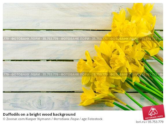 Daffodils on a bright wood background. Стоковое фото, фотограф Zoonar.com/Kasper Nymann / age Fotostock / Фотобанк Лори