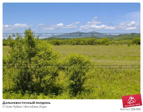 Дальневосточный полдень, фото № 328899, снято 10 июня 2008 г. (c) Олег Рубик / Фотобанк Лори