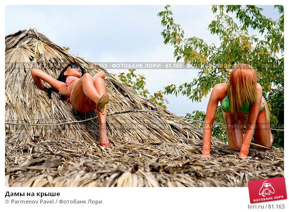 Дамы на крыше, фото № 81163, снято 25 августа 2007 г. (c) Parmenov Pavel / Фотобанк Лори