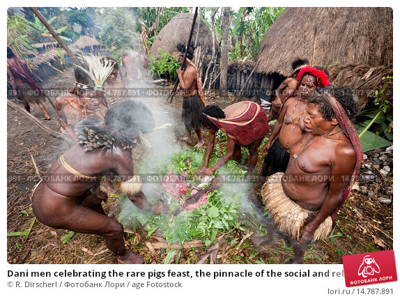 Dani men celebrating the rare pigs feast, the pinnacle of the social and religious life, Indonesia, Western New Guinea, Baliem Valley. Стоковое фото, фотограф R. Dirscherl / age Fotostock / Фотобанк Лори