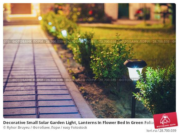 Купить «Decorative Small Solar Garden Light, Lanterns In Flower Bed In Green Foliage. Garden Design. Solar Powered Lamps In Row.», фото № 28700039, снято 17 июня 2016 г. (c) easy Fotostock / Фотобанк Лори