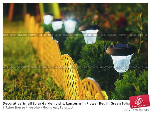 Купить «Decorative Small Solar Garden Light, Lanterns In Flower Bed In Green Foliage. Garden Design. Solar Powered Lamps In Row.», фото № 28700043, снято 17 июня 2016 г. (c) easy Fotostock / Фотобанк Лори