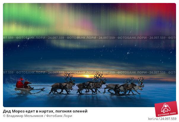 Купить «Дед Мороз едет в нартах, погоняя оленей», фото № 24097559, снято 5 декабря 2010 г. (c) Владимир Мельников / Фотобанк Лори