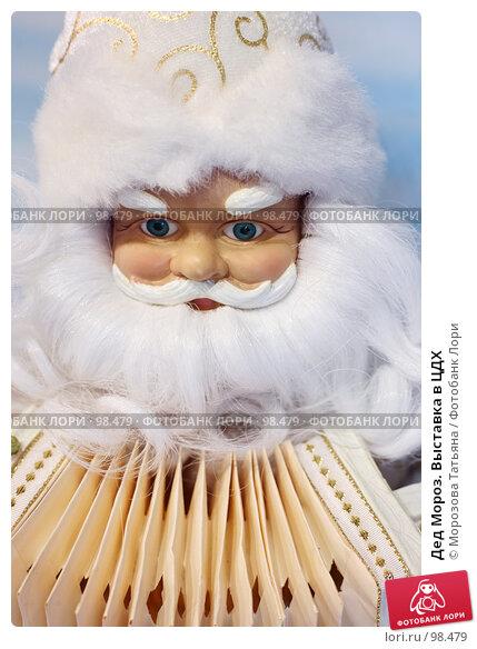 Дед Мороз. Выставка в ЦДХ, фото № 98479, снято 14 сентября 2007 г. (c) Морозова Татьяна / Фотобанк Лори