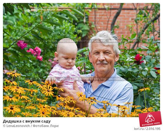 внучка дедушке дала фото