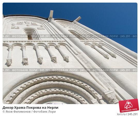 Декор Храма Покрова на Нерли, фото № 245291, снято 29 марта 2008 г. (c) Яков Филимонов / Фотобанк Лори