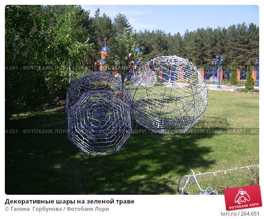 Декоративные шары на зеленой траве, фото № 264651, снято 25 апреля 2007 г. (c) Галина  Горбунова / Фотобанк Лори