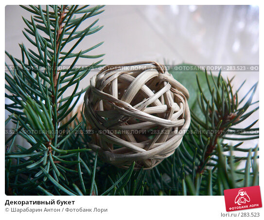 Декоративный букет, фото № 283523, снято 30 декабря 2006 г. (c) Шарабарин Антон / Фотобанк Лори