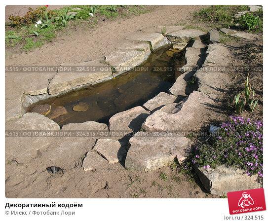 Декоративный водоём, фото № 324515, снято 17 мая 2008 г. (c) Морковкин Терентий / Фотобанк Лори