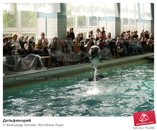 Дельфинарий, фото № 15243, снято 6 мая 2006 г. (c) Александр Легкий / Фотобанк Лори