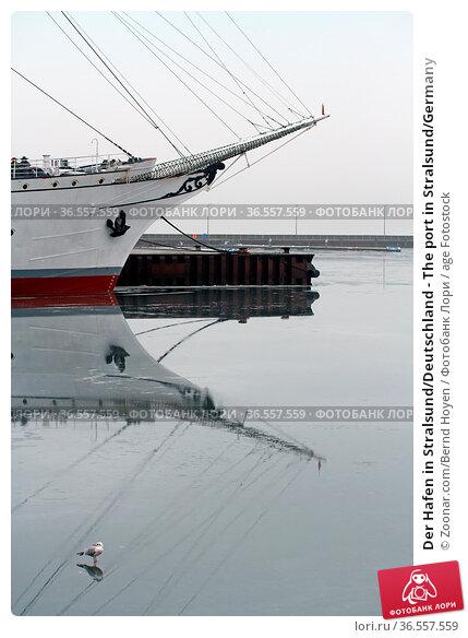 Der Hafen in Stralsund/Deutschland - The port in Stralsund/Germany. Стоковое фото, фотограф Zoonar.com/Bernd Hoyen / age Fotostock / Фотобанк Лори