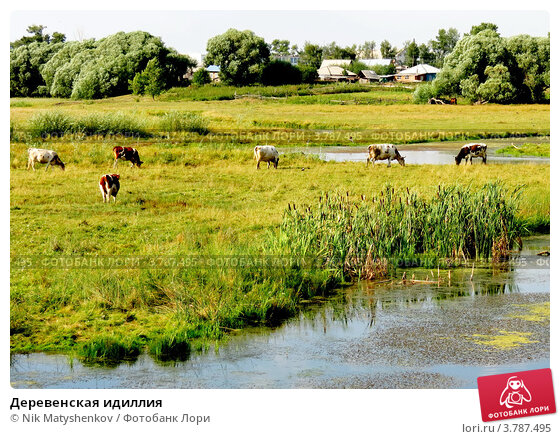 Деревенская идиллия. Стоковое фото, фотограф Nik Matyshenkov / Фотобанк Лори