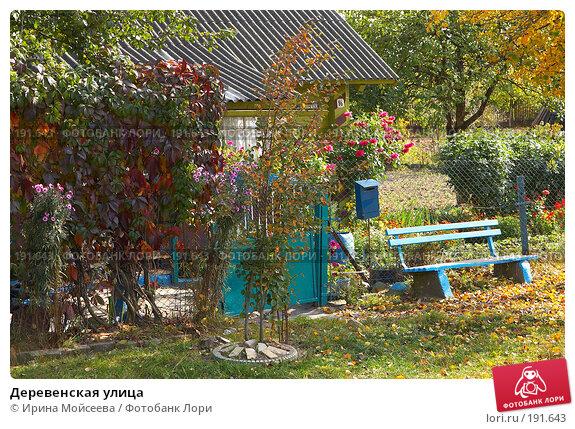 Деревенская улица, эксклюзивное фото № 191643, снято 26 сентября 2007 г. (c) Ирина Мойсеева / Фотобанк Лори