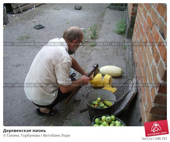 Деревенская жизнь, фото № 249151, снято 19 августа 2005 г. (c) Галина  Горбунова / Фотобанк Лори
