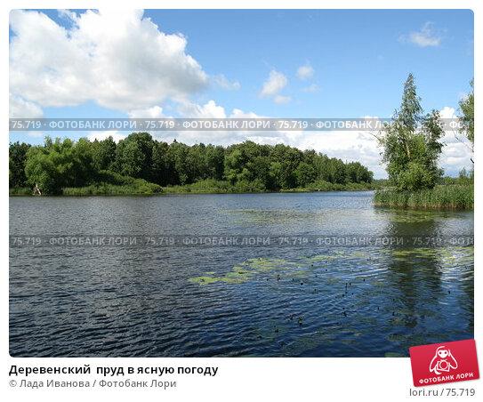 Деревенский  пруд в ясную погоду, фото № 75719, снято 17 июля 2007 г. (c) Лада Иванова / Фотобанк Лори