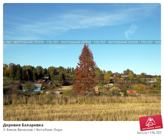 Деревня Бахаревка, фото № 176707, снято 21 сентября 2007 г. (c) Бяков Вячеслав / Фотобанк Лори