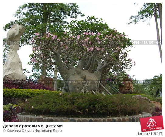 Дерево с розовыми цветами, фото № 119167, снято 25 марта 2007 г. (c) Колчева Ольга / Фотобанк Лори