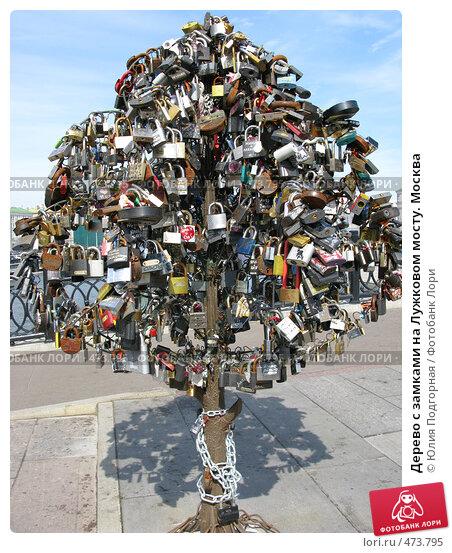 Купить «Дерево с замками на Лужковом мосту. Москва», фото № 473795, снято 9 июня 2008 г. (c) Юлия Подгорная / Фотобанк Лори