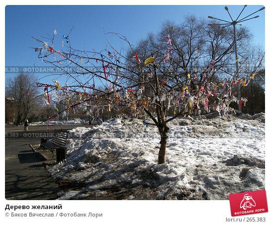 Купить «Дерево желаний», фото № 265383, снято 29 марта 2008 г. (c) Бяков Вячеслав / Фотобанк Лори