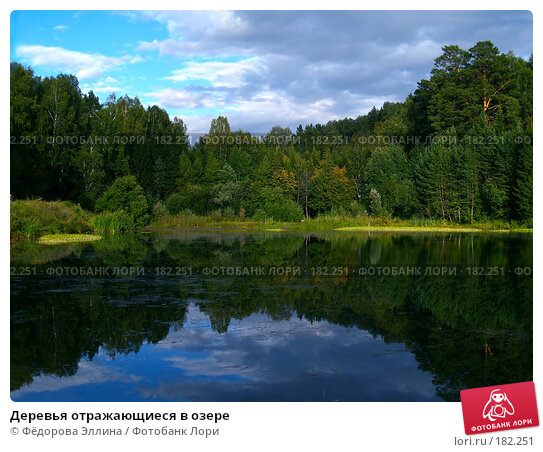 Деревья отражающиеся в озере, фото № 182251, снято 23 марта 2017 г. (c) Фёдорова Эллина / Фотобанк Лори
