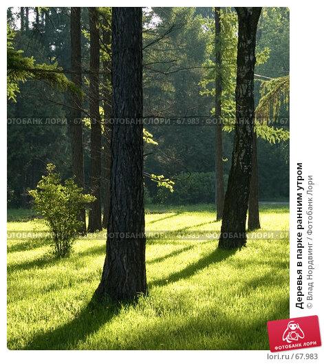 Купить «Деревья в парке ранним утром», фото № 67983, снято 20 мая 2007 г. (c) Влад Нордвинг / Фотобанк Лори