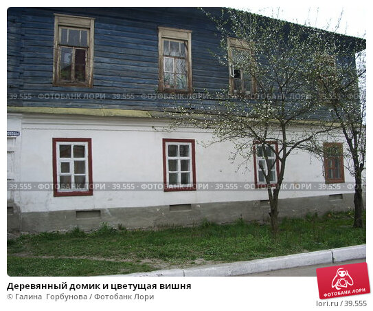 Купить «Деревянный домик и цветущая вишня», фото № 39555, снято 28 апреля 2006 г. (c) Галина  Горбунова / Фотобанк Лори