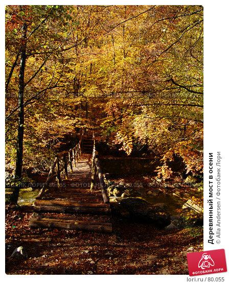 Деревянный мост в осени, фото № 80055, снято 27 октября 2006 г. (c) Alla Andersen / Фотобанк Лори