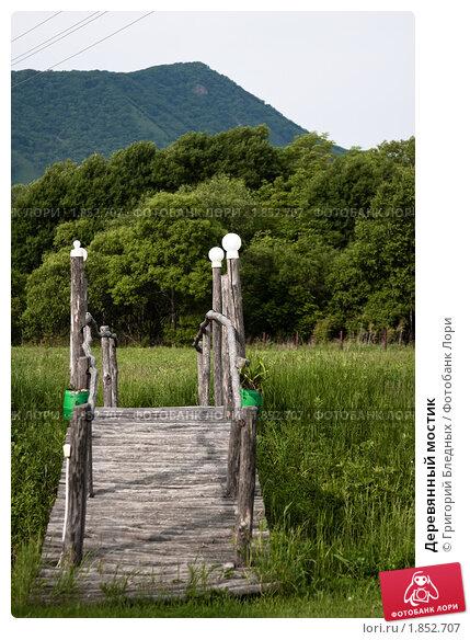 Деревянный мостик. Стоковое фото, фотограф Григорий Бледных / Фотобанк Лори