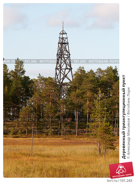Деревянный триангуляционный пункт, фото № 101243, снято 26 августа 2006 г. (c) Александр Максимов / Фотобанк Лори