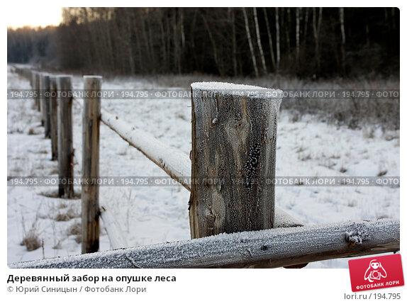 Деревянный забор на опушке леса, фото № 194795, снято 8 января 2008 г. (c) Юрий Синицын / Фотобанк Лори