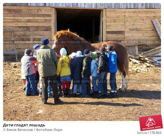 Купить «Дети гладят лошадь», фото № 178863, снято 30 марта 2007 г. (c) Бяков Вячеслав / Фотобанк Лори