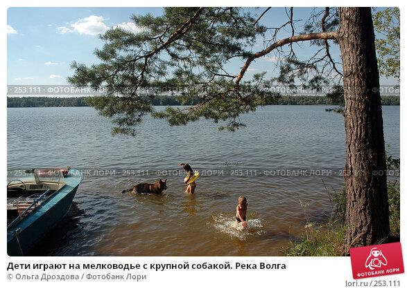 Дети играют на мелководье с крупной собакой. Река Волга, фото № 253111, снято 17 апреля 2004 г. (c) Ольга Дроздова / Фотобанк Лори