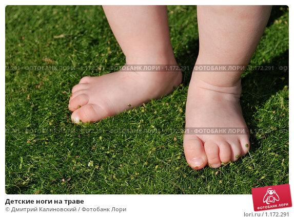 Купить «Детские ноги на траве», фото № 1172291, снято 22 августа 2009 г. (c) Дмитрий Калиновский / Фотобанк Лори