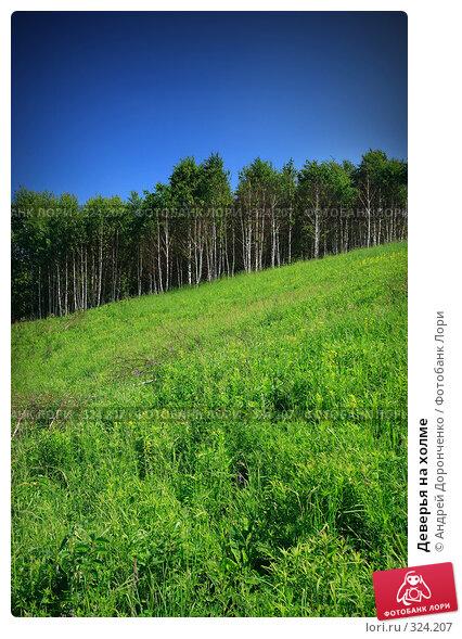 Деверья на холме, фото № 324207, снято 30 апреля 2017 г. (c) Андрей Доронченко / Фотобанк Лори
