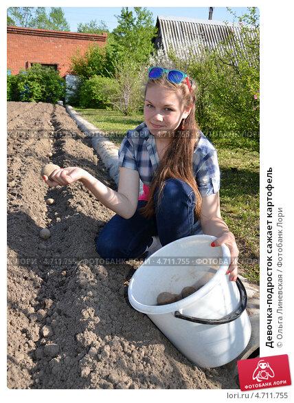 Девочка-подросток сажает картофель. Стоковое фото, фотограф Ольга Линевская / Фотобанк Лори