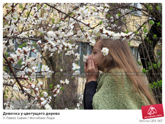 Купить «Девочка у цветущего дерева», фото № 251167, снято 12 апреля 2008 г. (c) Павел Савин / Фотобанк Лори