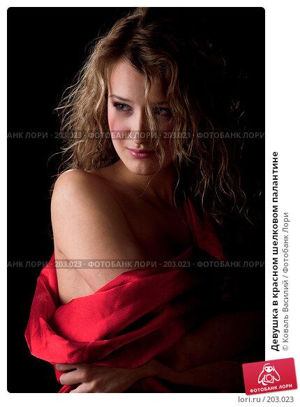 Девушка в красном шелковом палантине, фото № 203023, снято 28 октября 2007 г. (c) Коваль Василий / Фотобанк Лори
