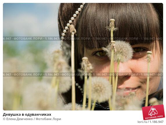 Девушка в одуванчиках. Стоковое фото, фотограф Елена Демченко / Фотобанк Лори