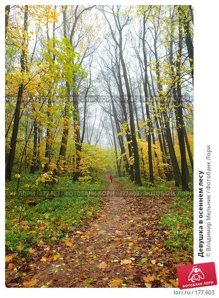 Купить «Девушка в осеннем лесу», фото № 177603, снято 20 октября 2007 г. (c) Владимир Мельник / Фотобанк Лори