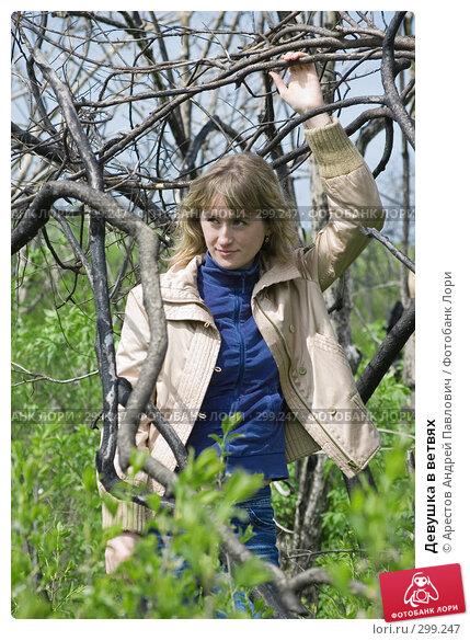 Купить «Девушка в ветвях», фото № 299247, снято 20 апреля 2008 г. (c) Арестов Андрей Павлович / Фотобанк Лори