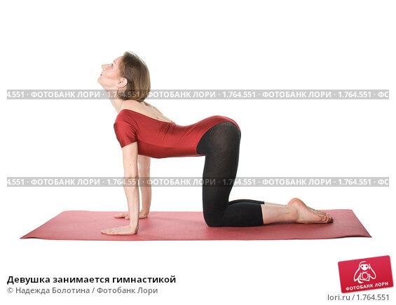 Купить «Девушка занимается гимнастикой», фото № 1764551, снято 23 апреля 2010 г. (c) Надежда Болотина / Фотобанк Лори