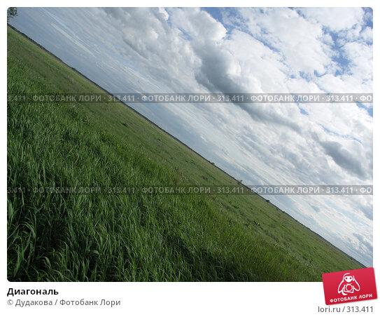 Диагональ, фото № 313411, снято 6 июня 2008 г. (c) Дудакова / Фотобанк Лори