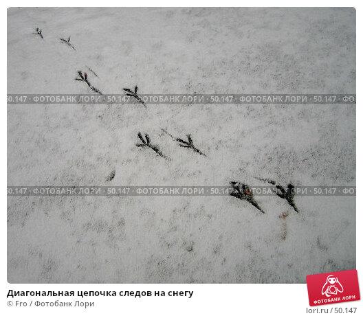 Диагональная цепочка следов на снегу, фото № 50147, снято 26 октября 2005 г. (c) Fro / Фотобанк Лори