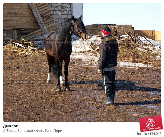Диалог, фото № 184047, снято 30 марта 2007 г. (c) Бяков Вячеслав / Фотобанк Лори